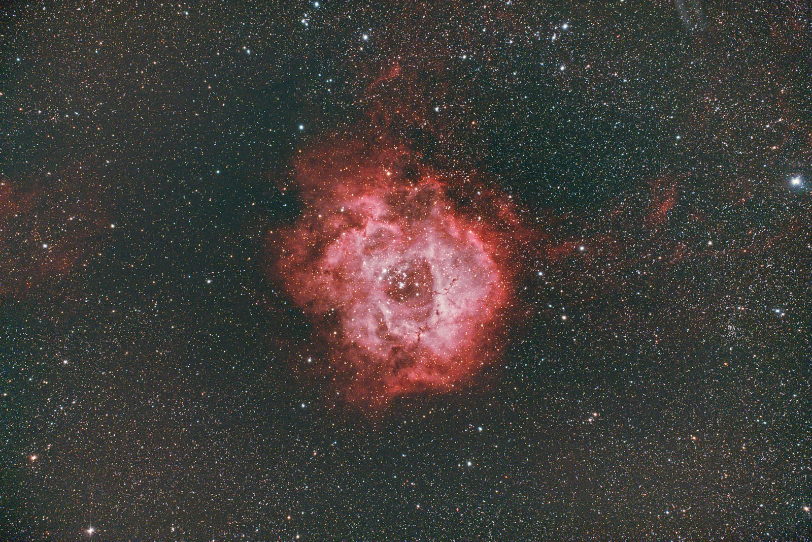 Rosette_light_BINNING_1_integration_ABE_ABE_reprocess_1600.jpg